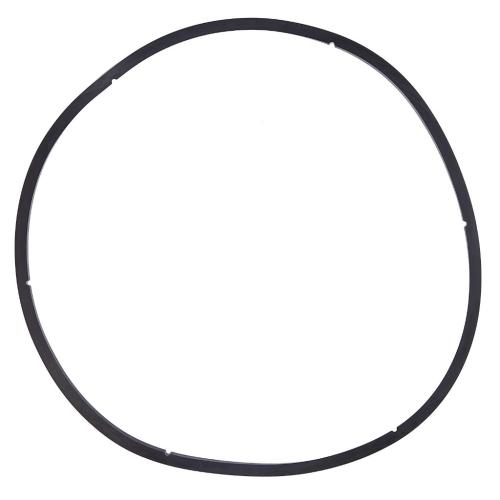 350166 Pentair Lid Gasket For Eq