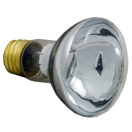 79108100 Floodlamp Med. Base 100