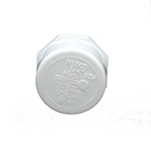 TP-PVC-448007A 448-007 3/4-Inch Fipt Thread Cap Pvc 40; Tp-pvc-448007a