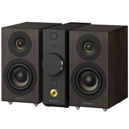 CAS1 Compact Audio System