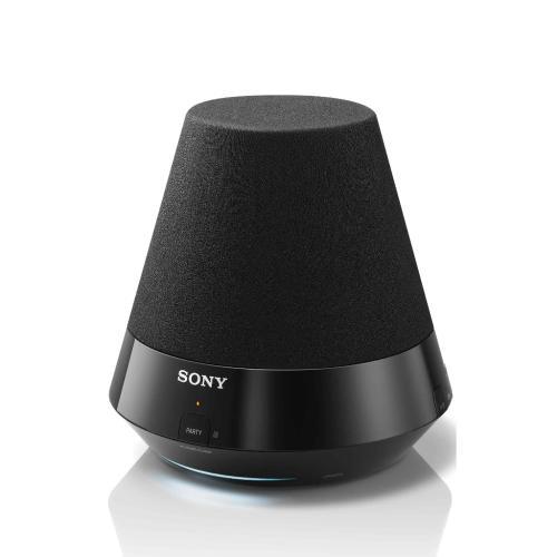 SANS310 Network Speaker